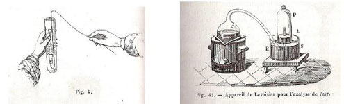 Figure 13 : Illustrations de Malaguti, 1863.