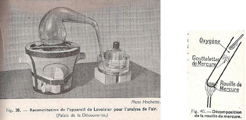 Figure 29 : Illustrations de Legreneur & Peyraud, 1954.