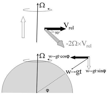 Figure 10: The velocity of a falling body –wg can be split up into one component perpendicular to the Earth's axis, another parallel to it. The first will be fully deflected, the second not.